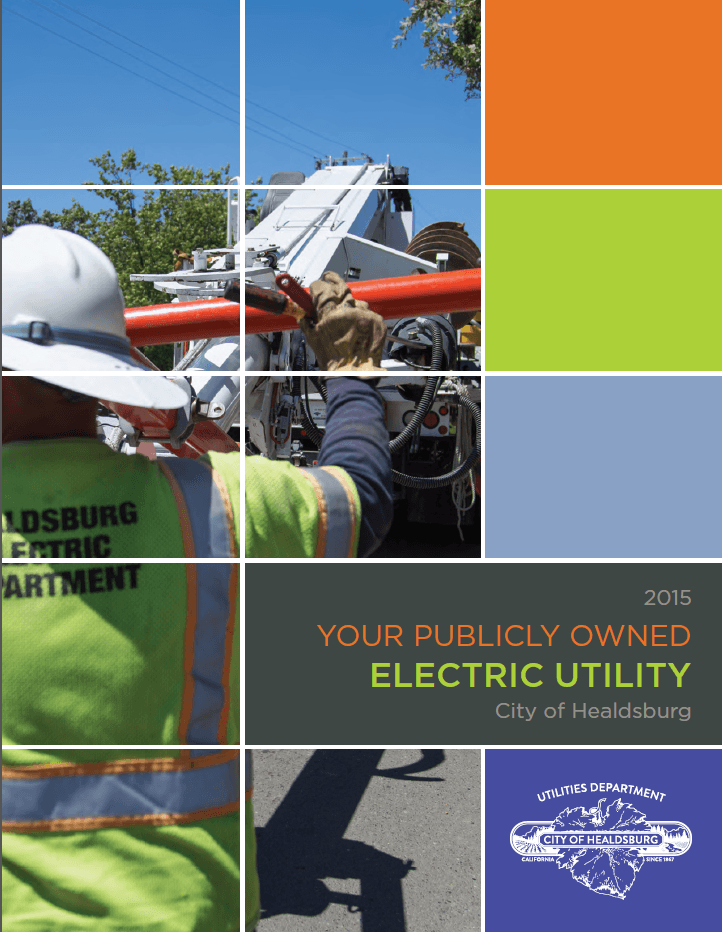 2015 Electric Report