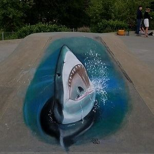 Shark Chalk Art